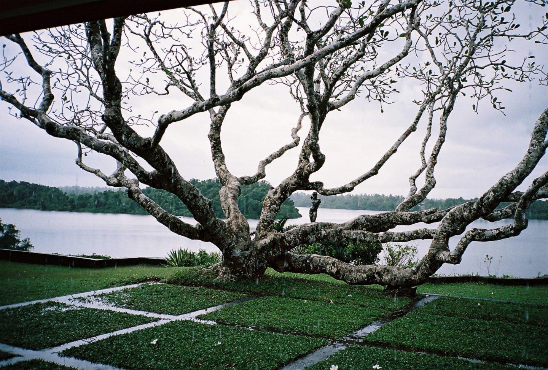 Geoffrey Bawa. Lunuganga. Sri Lanka